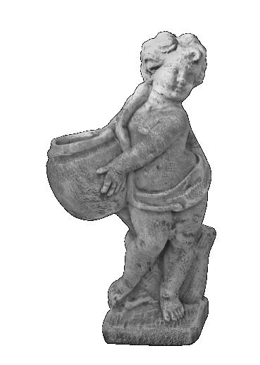 peppino ornamental 118