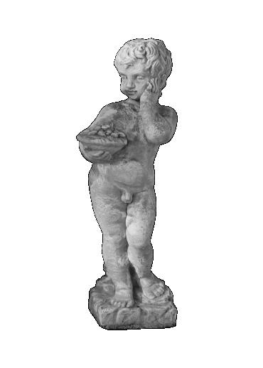 peppino ornamental 126