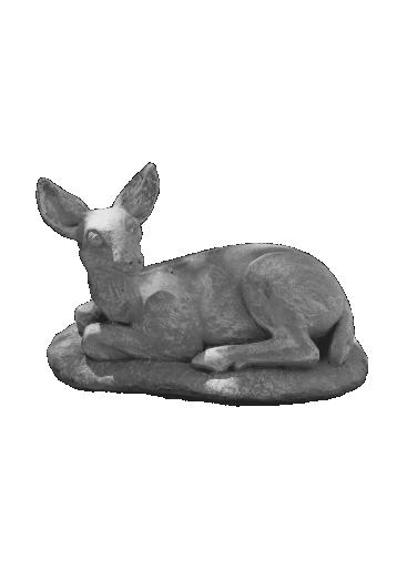 peppino ornamental 490