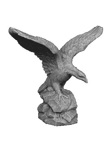 peppino ornamental 597