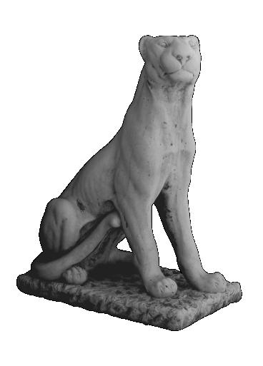 peppino ornamental 68