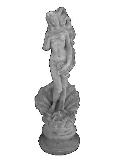peppino ornamental 82